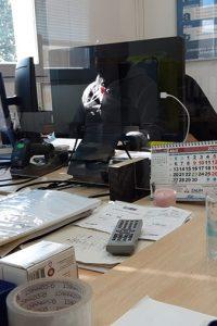 separacion-oficinas-aticovid